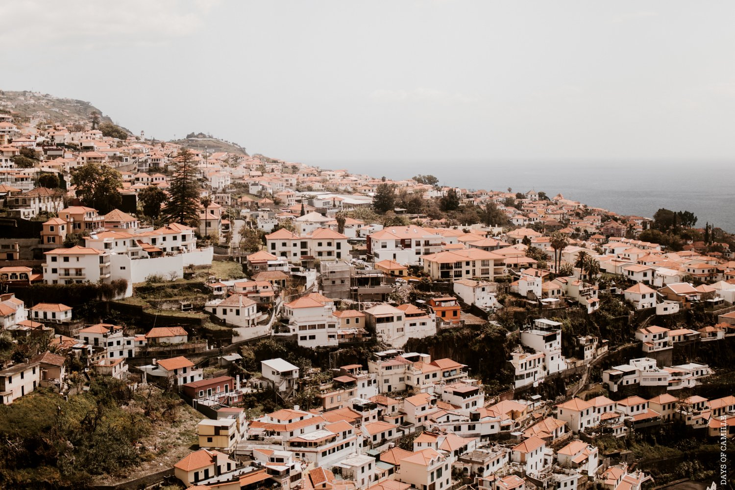 daysofcamille-madere-funchal-voyage112