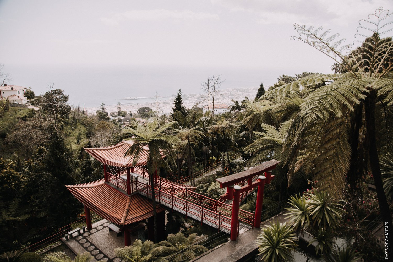 daysofcamille-madere-funchal-voyage171