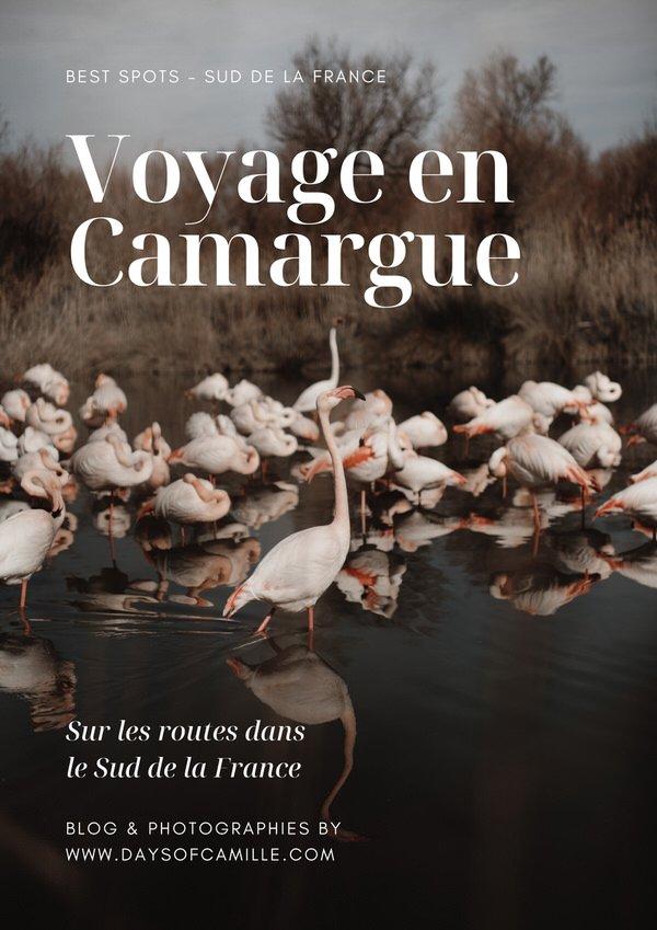 DAYS OF CAMILLE CAMARGUE